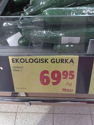 ekologisk gurka